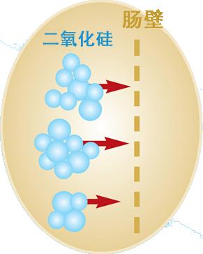 吸收二氧化硅和胶体硅胶